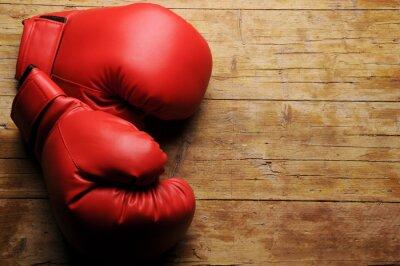 Fototapet Boxhandskar ¿En serio?