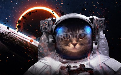 Fototapet Brave cat astronaut at the spacewalk. This image elements furnished by NASA