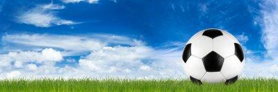 Fototapet breda retro fotboll på gräs banderoll framför blå molnig himmel