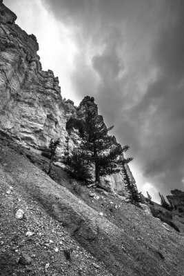Fototapet Bryce Canyon Svartvita fotografier