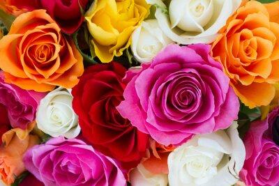 Fototapet bukett färska rosor