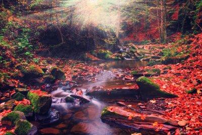 Fototapet carpathians natur