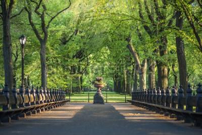 Fototapet Central parken. Bild av gallerianområdet i Central Park, New York City, USA