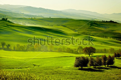Fototapet Countryside, San Quirico d`Orcia , Tuscany, Italy