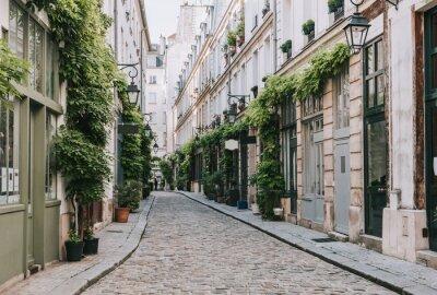 Fototapet Cozy street in Paris, France