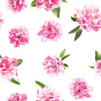 Fototapet Creative seamless pattern of pink peony flower on white. Minimal flat lay. Top view.