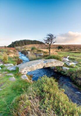 Fototapet Dartmoor National Park