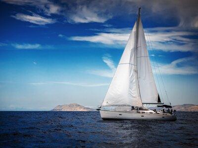 Fototapet De vita segel av jakter på bakgrund av havet