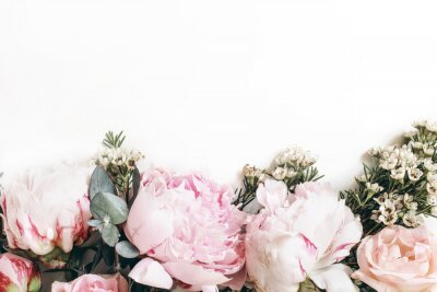 Fototapet Decorative web banner made of beautiful pink peonies, rosies and eucalyptus isolated on white background. Feminine floral frame composition. Styled stock photo.Empty space. Flat lay, top view.