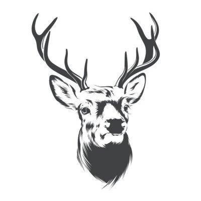 Fototapet Deer Head