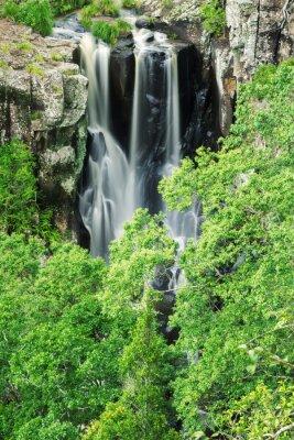 Fototapet Denham nedgångar i Beechmont, Queensland, Australien. Beläget i Denham Reserve.