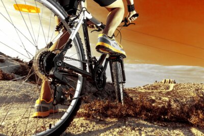 Fototapet Deportes. Bicicleta de montaña y hombre.Deporte sv exteriör