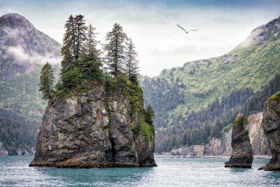 Fototapet Dimmig dag, Kenai Fjords National Park, Alaska, USA