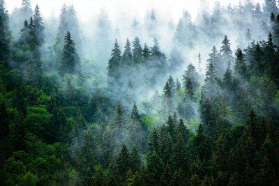 Fototapet Dimmigt bergslandskap