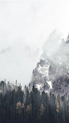 Fototapet dimmigt landskap i tatry