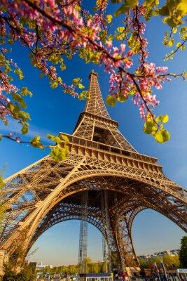 Fototapet Eiffeltornet under våren i Paris, Frankrike
