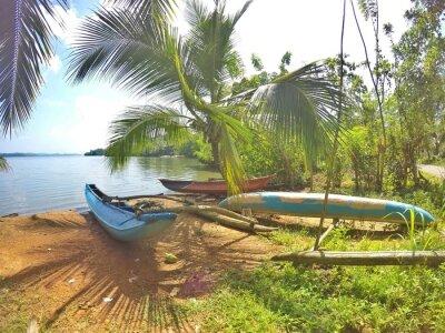 Fototapet Ein Blaues Katamaran liegt en einem traumhaften Strand auf der Tropeninsel Sri Lanka