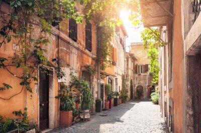 Fototapet En pittoresk gata i Rom, Italien