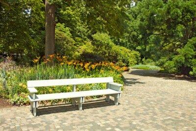 Fototapet Ensam träbänk i parken.