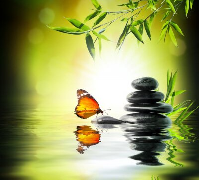 Fototapet exklusiv delikat koncept - fjäril på vatten i trädgården