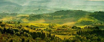 Fototapet Fält i Toscana