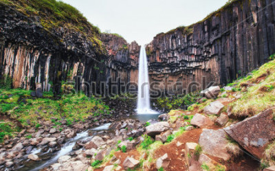 Fototapet Fantastisk utsikt över Svartifoss vattenfall. Dramatisk och pittoreska scen. Populär turistattraktion. Island, Europa