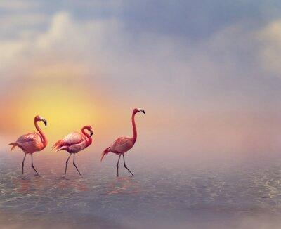 Fototapet flamingo Fåglar