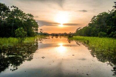 Fototapet Flod i Amazonas i skymningen, Peru, Sydamerika