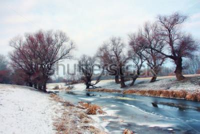Fototapet Flod på vintern