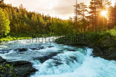 Fototapet Floden i Norge