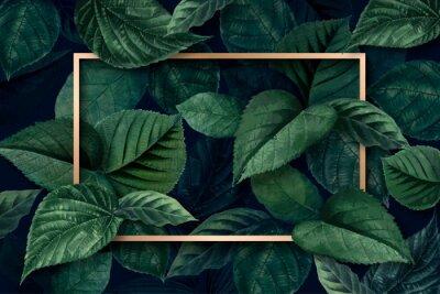 Fototapet Forest leaf frame
