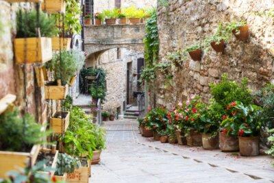 Fototapet Fotografering med Orton effekten av en gata dekorerad med växter och blommor i den historiska italienska staden Spello (Umbrien, Italien)