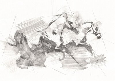Fototapet freehand horse head pencil drawing
