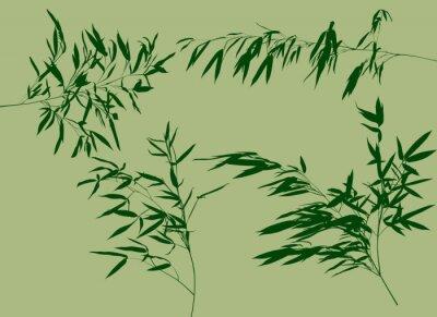 Fototapet fyra gröna bambu filialer, som illustration