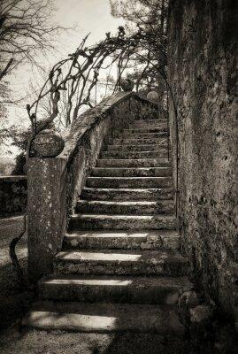 Fototapet gamla trappor