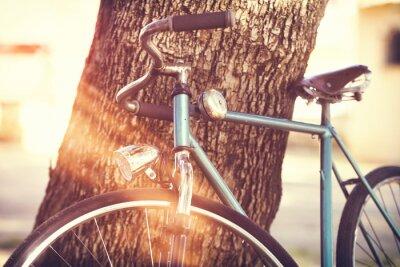 Fototapet Gammal cykel lutad mot ett träd