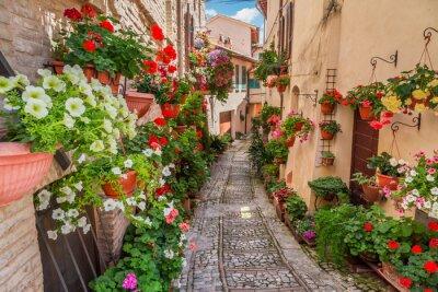 Fototapet Gata i liten stad i Italien i solig dag, Umbrien