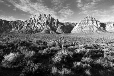 Fototapet Geologiska Bergformationer Red Rock Canyon Las Vegas USA