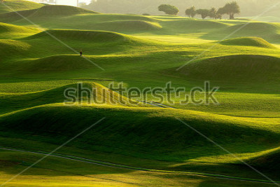 Fototapet golf place with nice green