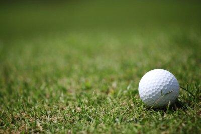 Fototapet Golfboll i gräset