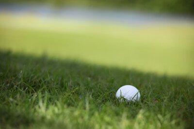 Fototapet Golfboll på kurs