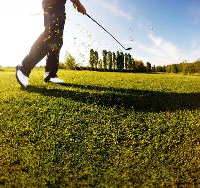 Fototapet Golfsving på banan. Golfspelare utför en golfslag