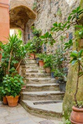 Fototapet Gränd i italienska gamla stan Ligurien Italien