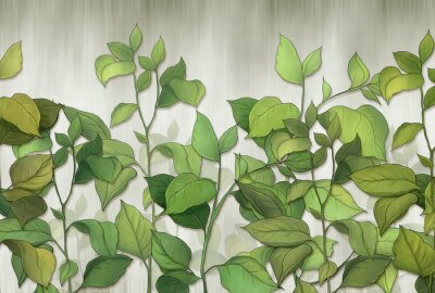 Fototapet Green leaves of a house plant on a wall background. Tropical leaves. for interior printing.