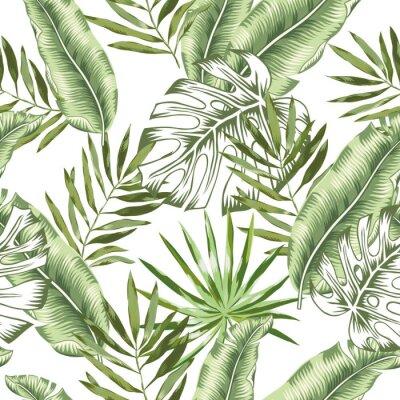 Fototapet Grön banan, monstera palmblad med vit bakgrund. Vektor sömlöst mönster. Tropisk djungel löv illustration. Exotiska växter grönska. Sommarstrand blommig design. Paradisets natur.