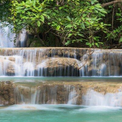 Fototapet grön Water