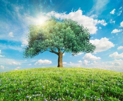 Fototapet Gröna träd fjäderlandskap