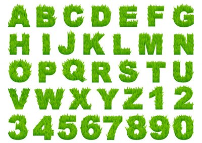 Fototapet Grönt gräs alfabetet med bokstäver och siffror