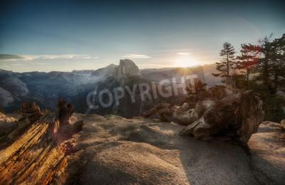 Fototapet Half Dome och Yosemite Valley i Yosemite National Park under färgrik solnedgång och gamla trädstammar