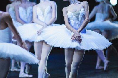 Fototapet Händerna på ballerinor. Händerna på ballerinor. Balett uttalande. Stora ballerinor. Ballerinas i rörelsen.
